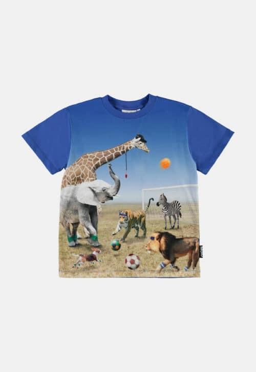 Molo T-shirt 'Roxo - Football Game'