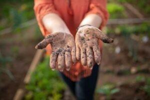 Met je kleuter starten met tuinieren - 10 leerzame tips