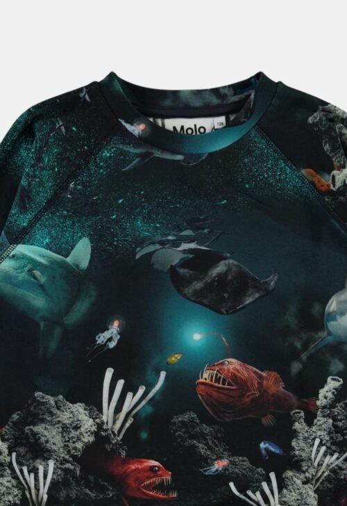 Molo Sweater 'Romeo - Deep Sea'