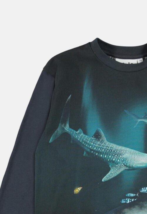 Molo Longsleeve 'Rexton - Dark Sharks'